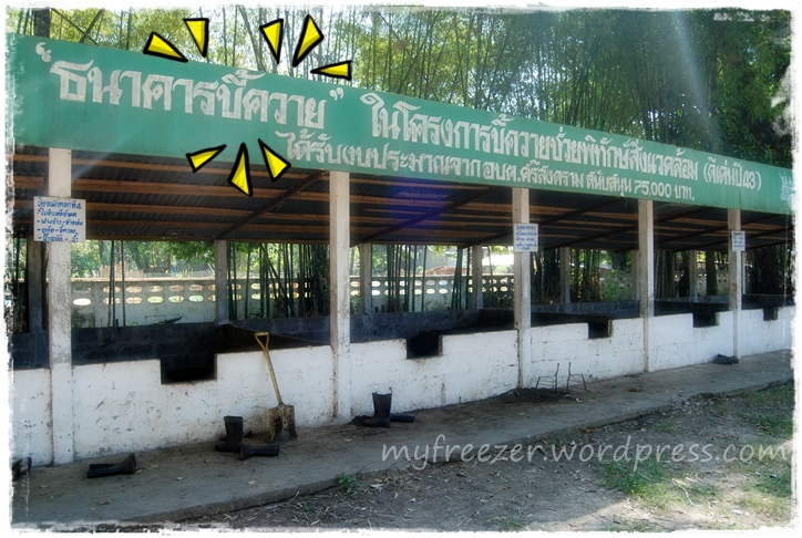 nong ba tao school 03